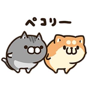 【LINE無料スタンプ速報:隠し】お試しボンレス犬とボンレス猫 スタンプ(2020年12月29日まで)