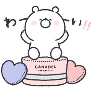 【LINE無料スタンプ速報】ガーリーくまさん×カナデル スタンプ(2020年12月21日まで)